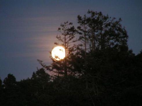 Bulan (part2)